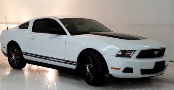 trimmed mustang.PNG
