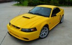 tedness Yellow GT