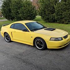 2002 Mustang V6 >> 2002 Mustang Gt V6 Mustang Forums
